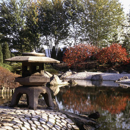 The japanese garden in the Rheinaue park